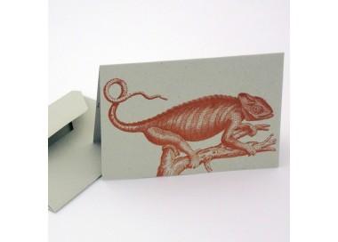 Double Cards and Envelopes Eco Friendly Italian Paper Chameleon - LPR S08B