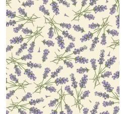 Decorative Paper Lavender - CRT 565